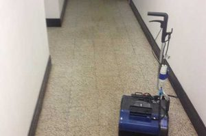 Floor Restorations | Maid Marions
